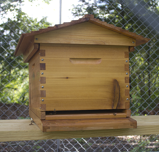New beehive at Live Oak Landing in Freeport. Lori Ceier/Walton Outdoors