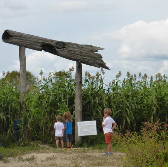 Kids pondering the corn maze at the entrance. Lori Ceier/Walton Outdoors