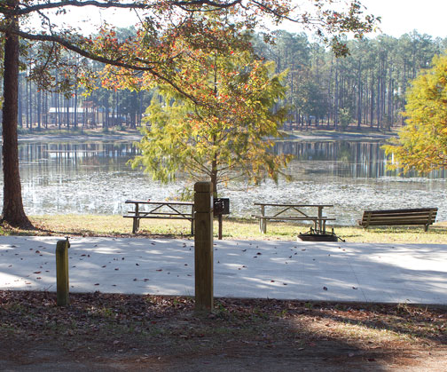 RV and primitive campsites are available at Pine Log. Lori Ceier/Walton Outdoors